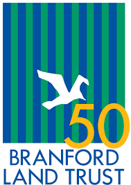 FreeThink participates in the Branford Land Trust spring clean-up project!